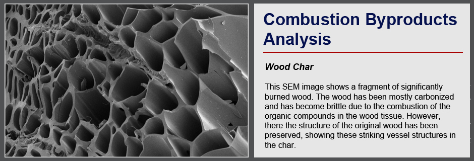 Combustion By-Products Analysis